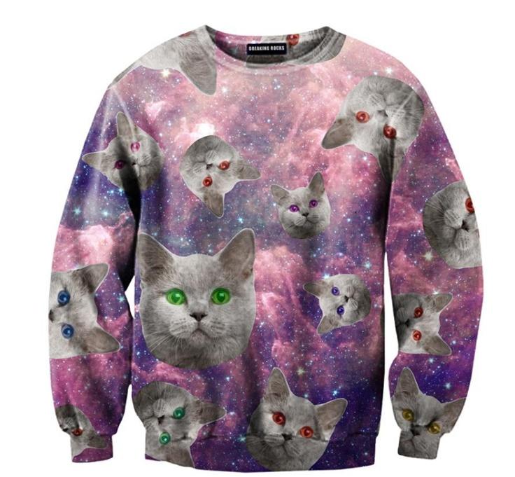 gatti nello spazio